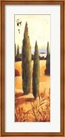 Framed Montecastello I