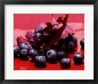 Framed Huckleberries