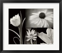 Framed Summer Garden I