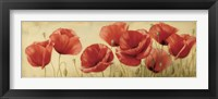 Framed Poppies Grace II