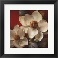 Framed Magnolia Passion II