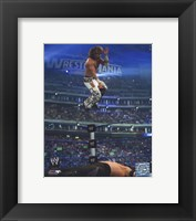 Framed Shawn Michaels #549