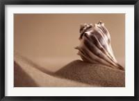 Mythic Beach II Framed Print