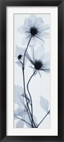Tall Dahlia Framed Print