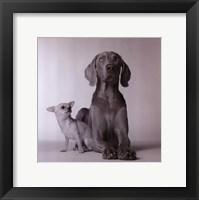 Framed Max & Roxie