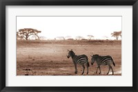 Framed Crossing The African Plains