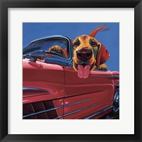 Dog About Town Framed Print