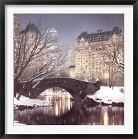 Framed Twilight in Central Park