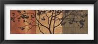 Framed Arboreal II