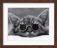 Framed Cool Cat I