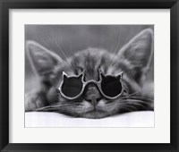 Framed Cool Cat I