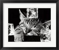 Framed Cool Cat II