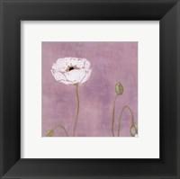 Framed Poppy ll