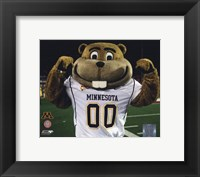 Framed Mascot Goldy University of Minnesota Golden Gophers 2008