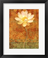 Framed Abstract Lotus II