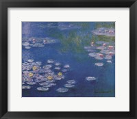 Framed Waterlillies at Giverny