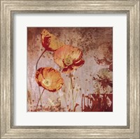 Framed Small Floral Prints 1