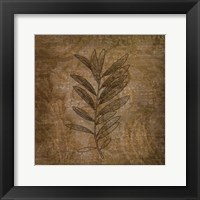 Leaves of Winter Framed Print
