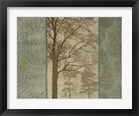 Framed Natural Elements II