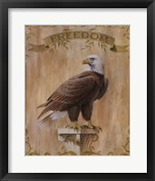Framed Eagle Freedom