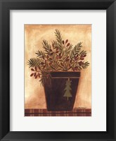 Framed Pines in a Bucket