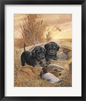 Framed Black Lab Pups