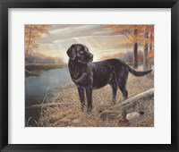 Framed Black Lab with Decoys