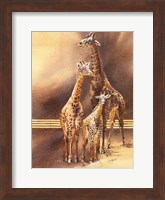 Framed Family of Giraffes