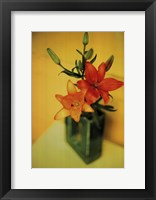 Framed Day Lillies