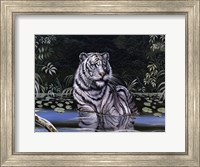 Framed Wading White Tiger