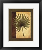 Framed Palm Tropical I