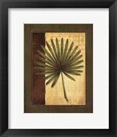 Palm Tropical I Framed Print