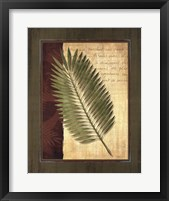 Palm Tropical III - grande Framed Print