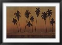Framed Sunset Palms II - CS