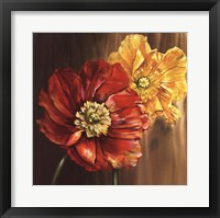Framed Poppies - square