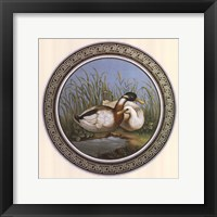 Framed Two Ducks, (The Vatican Collection)