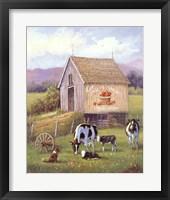 Framed Annie's Home Grown Apples