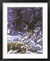 Framed Eagle In Winter