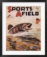Framed Sports Afield
