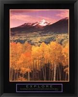 Framed Explore Aspen Grove