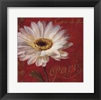 Paris Blossom I Framed Print