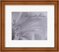 Framed Aimer IV