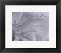 Aimer IV Framed Print