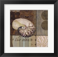 Contemporary Shell II Framed Print