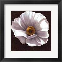 Framed White Poppies I - mini