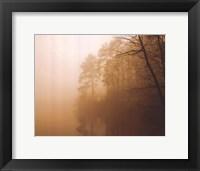 Fog on Shelly Lake I Framed Print