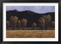 Framed Cottonwood Country II