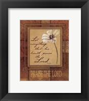 Framed Praise The Lord
