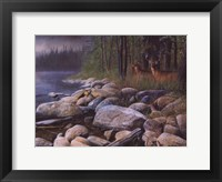 Perfect Place Framed Print