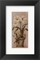 Bulbs In Bloom ll Framed Print